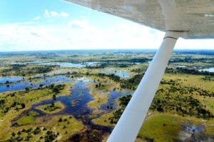 Botswana Okavango Delta small