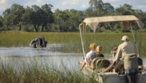 XUDUMa-botswana-safari-at-andbeyond-xudum-okavango-delta-lodge-23.jpg.950x0