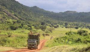 truck-in-landscape