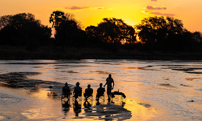 Twenty of the BEST safaris for 2020