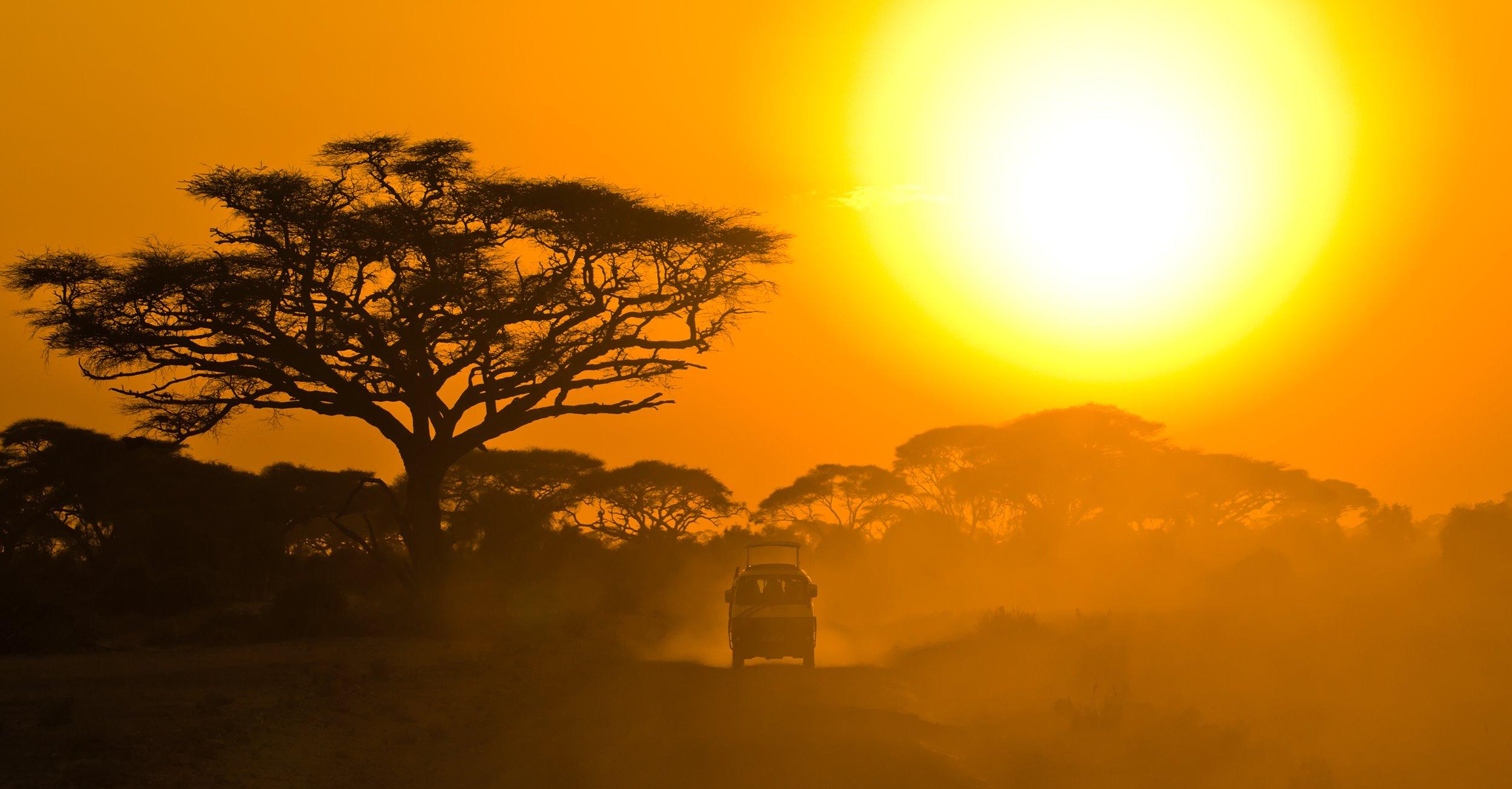 How do I plan a safari in Kenya?