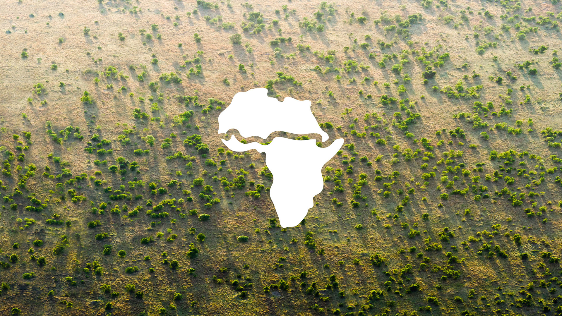 Africa's Great Green Wall
